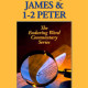 James and first and second peter by David Guzik at Enduring Word