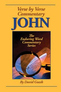 john-by-david-guzik-at-enduring-word