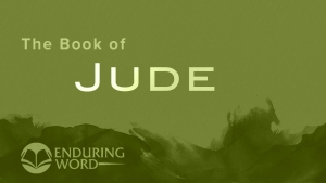 Enduring Word Bible Commentary Audio