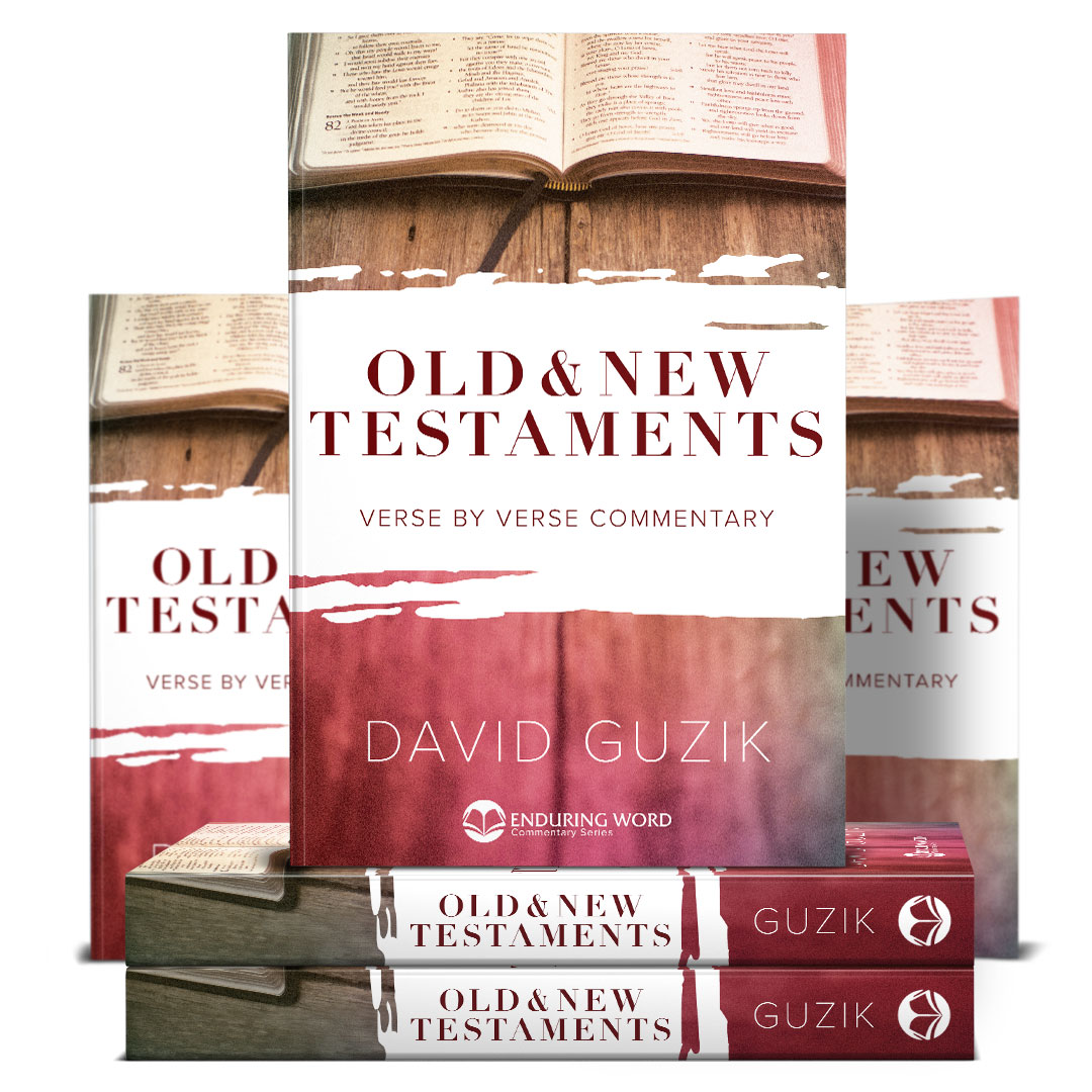 Buy the Complete Set of Available Commentaries in Print by
